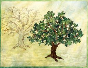 tree transformation-s1