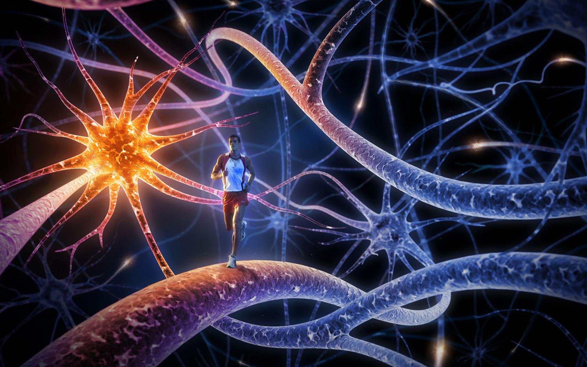 brain path runner