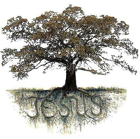 roots-jesus